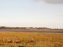 空的与河和清楚的天空的国家沿海场面 图库摄影
