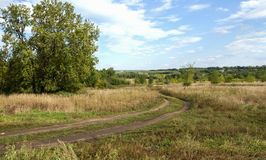 空的乡下路通过领域用麦子 库存照片