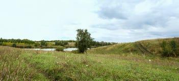 空的乡下路通过领域用麦子 免版税库存照片