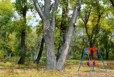 空的儿童的摇摆在一个美丽的秋天公园 库存照片