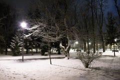 空的公园在晚上在一个多雪的冬日 库存图片