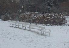 空的公园长椅行与雪的自白天 免版税库存图片