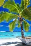 空的吊床在海滩的棕榈树下 免版税库存照片