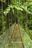 空的垂悬的金属桥梁在热带森林里 库存图片