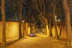 空的夜街道 图库摄影
