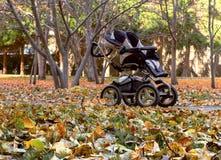 空的婴孩摇篮车在秋天公园 库存照片