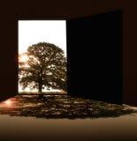空的室和树与门 免版税库存图片