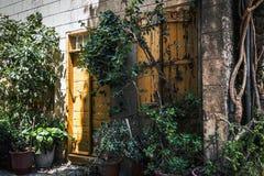 空的房子的老被放弃的门在绿色植物中的 免版税库存照片