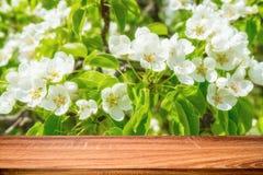 空的木桌有开花的野苹果树春天背景  能为显示或蒙太奇产品使用 库存照片