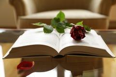 空的椅子、开放书、深红玫瑰色花、瓣、浪漫史或者爱情小说概念 库存照片