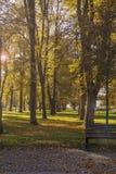 空的欧洲公园Autumnl风景  五颜六色的树和地方教育局 图库摄影