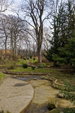 空的池塘在公园 免版税库存图片