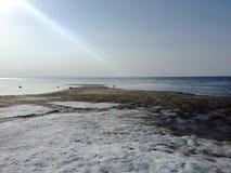 空的海岸风景在春天 免版税库存照片