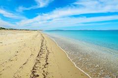 空的海滩在Fiume Santo 免版税库存图片