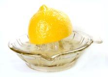 空的玻璃柠檬剥削者 库存照片