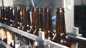 空的瓶在一条技术线的行站立在啤酒工厂 继续前进传送带的瓶在玻璃瓶 影视素材