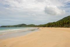 空的白色沙子海滩, El Nido,菲律宾 免版税库存照片