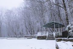 空的积雪的树荫处在公园 免版税图库摄影