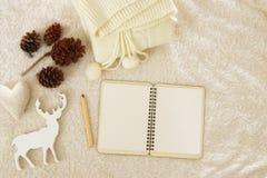 空的笔记本和杯子在舒适和温暖的毛皮地毯的热奶咖啡 顶视图 库存照片