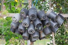 空的罐在庭院里 免版税库存照片