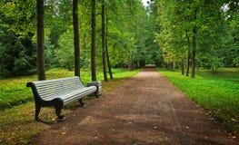 空的菩提树胡同和一条长凳在公园 库存图片