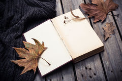 空的葡萄酒书和被编织的毛线衣有秋叶的 库存照片