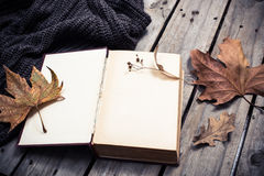空的葡萄酒书和被编织的毛线衣有秋叶的 免版税库存图片