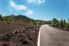 空的路在泰德峰国家公园,特内里费岛,加那利群岛,西班牙 免版税库存照片