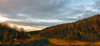 空的路通过秋天金子上色了森林taiga小山 库存照片
