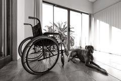 空的轮椅 免版税图库摄影