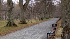 空的道路和长凳在哈利法克斯公园里在秋天 免版税库存图片