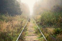 空的铁路审阅有雾的森林 免版税库存图片