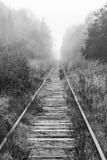 空的铁路审阅有雾的森林 免版税库存照片