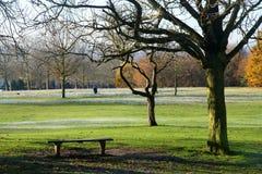 空的长凳在公园 库存图片