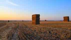 空的领域的长方形干草堆在落日温暖的光阐明的收获以后  免版税库存照片