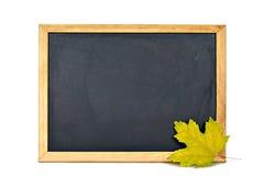 空的黑板和黄色枫叶 免版税库存照片