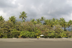 空的Beachwith棕榈树森林和空的椅子,格斯达里加 免版税库存图片