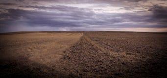 空,棕色和多云领域 库存图片