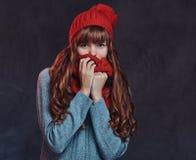 穿一件温暖的毛线衣的一个美丽的红头发人女孩的画象,用围巾盖她的面孔 库存照片