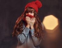 穿一件温暖的毛线衣的一个美丽的红头发人女孩的画象,用围巾盖她的面孔 图库摄影