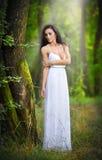 穿一件典雅的长的白色礼服的可爱的小姐享受神圣光射线在她的面孔的在被迷惑的森林 长的h 免版税库存照片