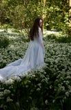 穿一件长的白色礼服的美丽的妇女在森林里 库存图片
