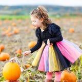 穿万圣夜在南瓜补丁的小女孩巫婆服装 免版税库存图片