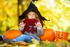 穿万圣夜服装的可爱的小女孩获得在一个南瓜补丁的乐趣在秋天天 库存照片
