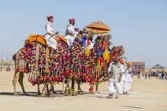 穿传统Rajasthani礼服的骆驼和印地安人参加先生 作为沙漠节日一部分的沙漠比赛在Jaisalm 库存图片