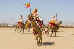 穿传统Rajasthani礼服的骆驼和印地安人参加先生 作为沙漠节日一部分的沙漠比赛在Jaisalm 库存照片