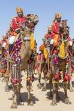 穿传统Rajasthani礼服的骆驼和印地安人参加先生 作为沙漠节日一部分的沙漠比赛在Jaisalme 免版税库存照片