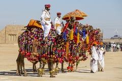 穿传统Rajasthani礼服的骆驼和印地安人参加先生 作为沙漠节日一部分的沙漠比赛在Jaisalme 库存图片