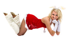 穿兔宝宝服装的性感的妇女摆在反对在全长的被隔绝的白色 库存图片