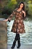 穿典雅的外套的有吸引力的深色的模型摆在湖旁边在秋天公园 库存图片